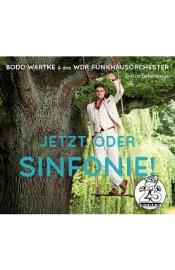Jetzt oder Sinfonie! (Cover)